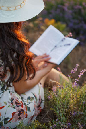 Woman with long brown hair in light patterned sundress and hat sits on lavender field with book in her hands and lavender twigs on pages. Shallow dof. Focus on hat and hair. Stock Photo