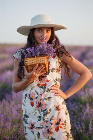 Young romantic woman in light floral patterned dress and hat stands on lavender field with bunch of flowers in wicker basket under sunset light. Stock Photo