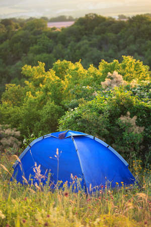 Bright blue travel tent stands on glade with high grass and wild flowers at the background of trees and shrubs.