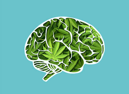 Vector of a human brain made of marijuana leaves