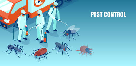 Vector of a pest control professional team exterminating insects