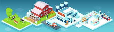 Isometric vector of a milk produce production chain from a dairy farm through factory to consumer on a supermarket shelves