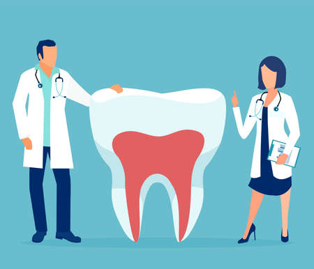 Vector of two doctor dentist standing by a healthy tooth
