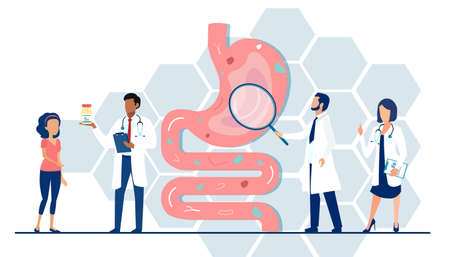 Vector of a medical team doctors examining gastrointestinal tract and digestive system giving advice to a patient Ilustração