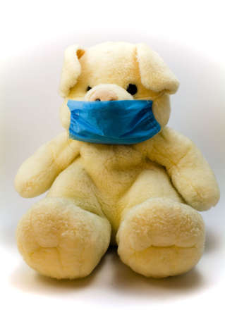 A pig toy wearing a surgical mask photo