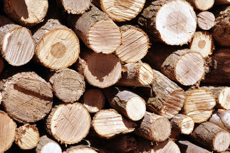 stack of wood, heat for the winter season Stock Photo - 4757863