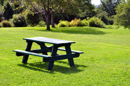 Picknicktafel in het park