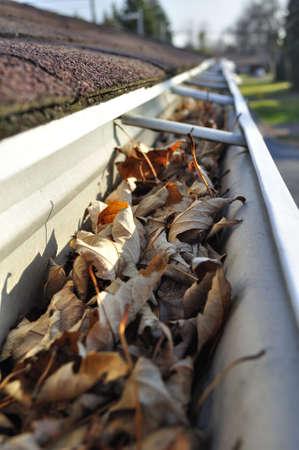 Home maintenance: Fall leaves in rain gutter.