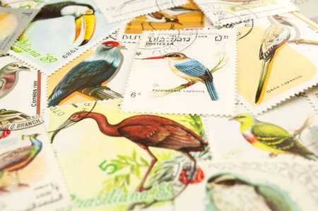 philately: Collection of postage stamps displaying colorful birds. Stock Photo
