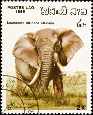 Postage stamp featuring an African elephant (Loxodonta africana). Stok Fotoğraf