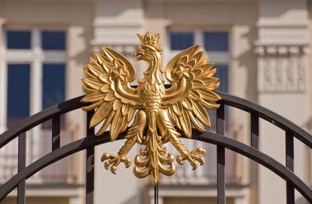 polish: Eagle, polish national symbol.