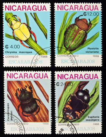 four species: Nicaragua - circa 1988:postage stamps feature four species of central america beetles, circa 1988 in Nicaragua. Stock Photo