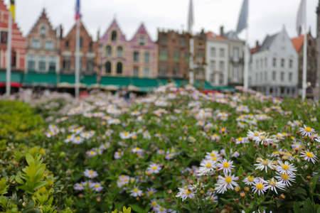 Perspective near flowers in Bruges Stock Photo