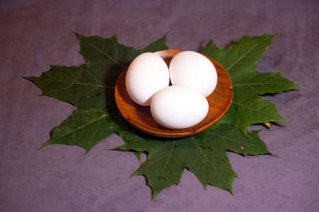 Three eggs on maple leaves Banco de Imagens