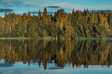 Landscape forest river shore reflection in the water. The picture resembles a sound wave. Banco de Imagens
