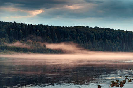 Evening fog over the calm surface of the water in the river with forest shore