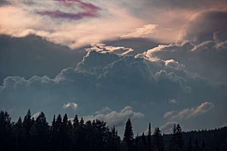 Gray Cumulus volumetric clouds over the forest, illuminated by the setting sun Banco de Imagens