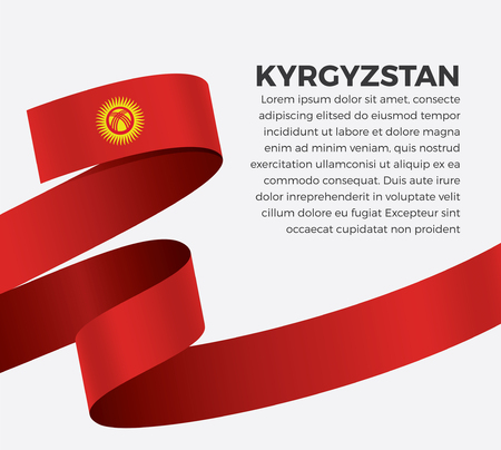 Kyrgyzstan flag on a white background