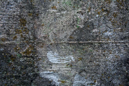 Fragment of concrete wall with moss for abstract background Stock Photo - 4917670