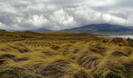 Typical Irish landscape on windy day in Dingle peninsula, Brandon head photo