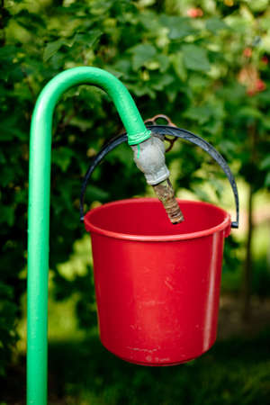 Water pipe in the garden with red bucket photo
