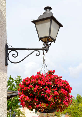Old lantern with hanging flowers photo