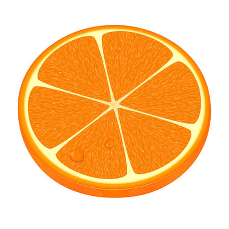illustration of fresh orange