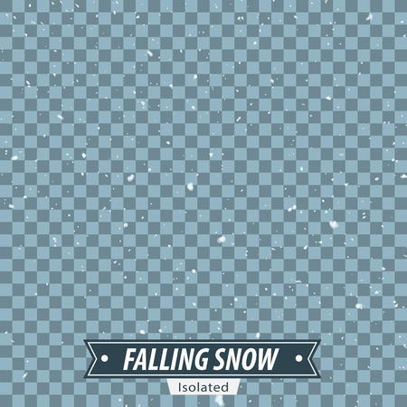thaw: Isolated Falling Snow  EPS10 Vector