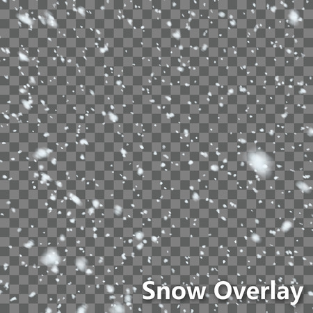Isolated Falling Snow Overlay  EPS10 Vector