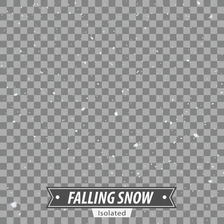 落下の雪 EPS10 ベクトルを分離