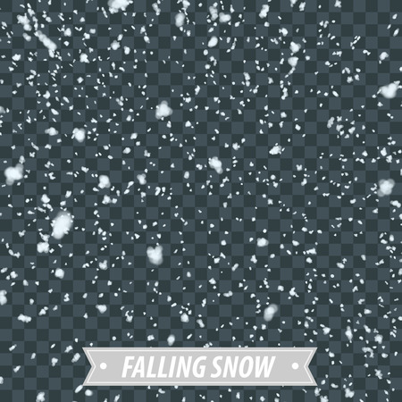 Isolated Heavy Snow Falling EPS10 Vector