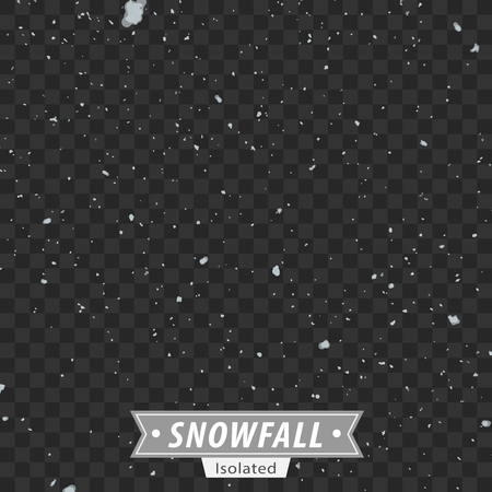 Isolated EPS10 Vector Snowfall