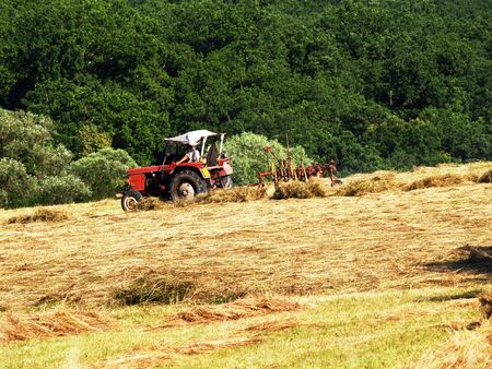 summer harvest with special agricultural machine Stock Photo - 3322375