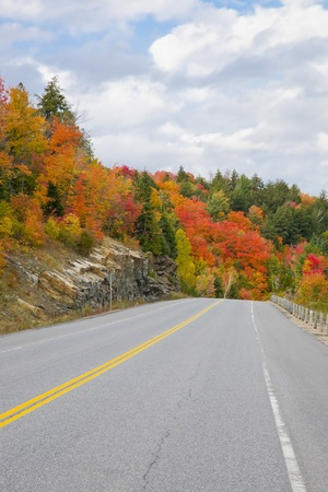 Empty road in the forest, early fall photo