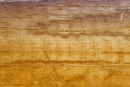 veteda wood violet and orange colors and several slices Stock Photo