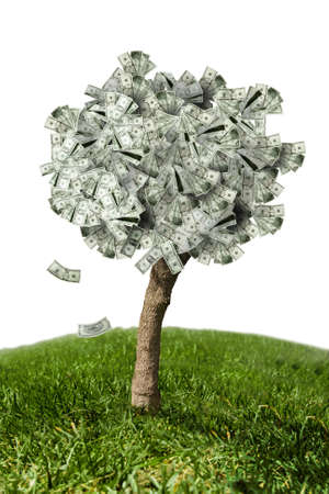 photo of money tree made of dollars photo