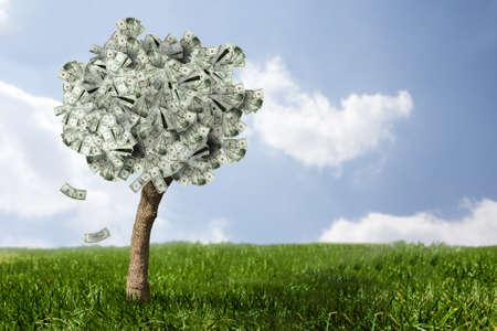 Foto van money tree gemaakt van dollar