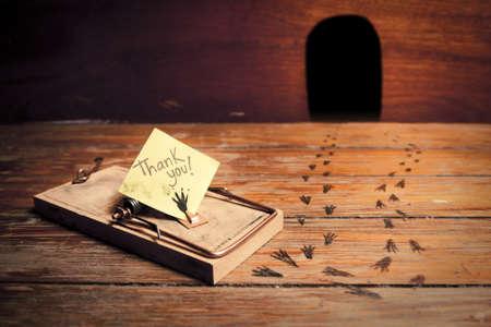 rats: trappola per topi attivato con un messaggio divertente invece di formaggio Archivio Fotografico