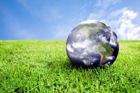 photo of earth in grass ideal for background photo