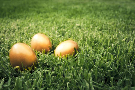 photo of three golden eggs on grass to represent wealth and luck Stock Photo - 9435733