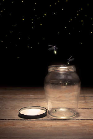 real fireflies in a jar Stock Photo