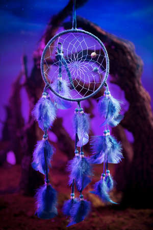 Dreamcatcher hanging in a forest at night photo