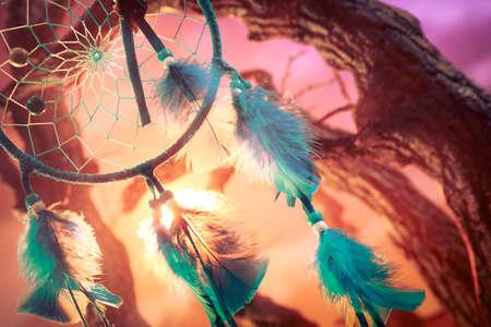 dreamcatcher: colector ideal en un bosque m�gico Foto de archivo