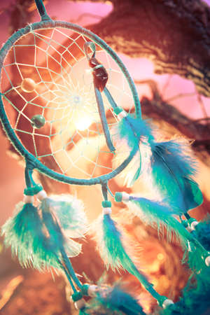 dream catcher on a magical forest Banco de Imagens - 28028891