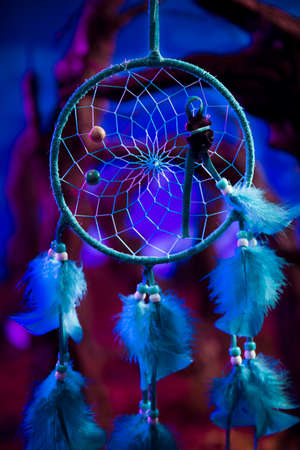 Dreamcatcher hanging in a forest at night