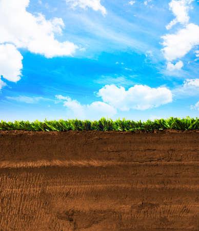 in ground: Sezione di terra con erba Archivio Fotografico