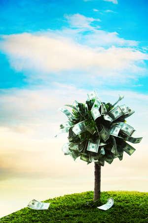abundance money: photo of tree made of dollars