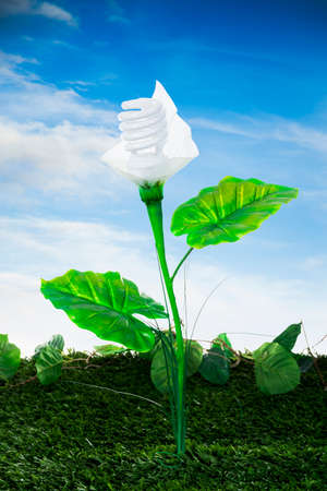 earth friendly: Ecological concept, earth friendly light bulb plant Stock Photo