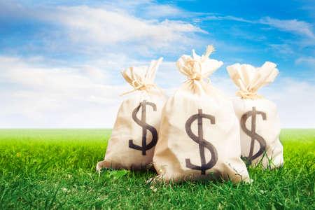 abundance money: bags of money on a clear bright sky
