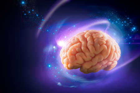 systems thinking: Human brain floating on a purple background
